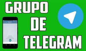Grupo de Telegram de El Mundo de los Pajaros