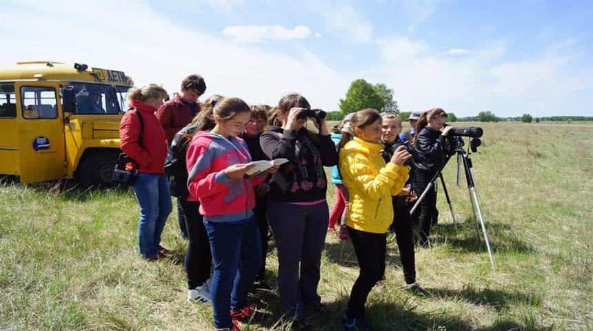 grupos de observadores de aves