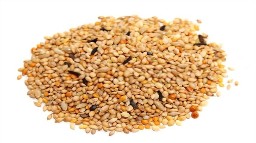 semillas variadas para canarios